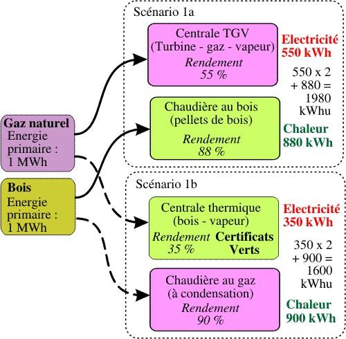 Politique nerg tique pour le renouvelable for Cuisiner au gaz ou a l electricite